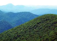Горы Аппалачи, горная система в Северной Америке.