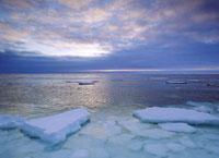 Гудзонов залив, внутреннее море Канады.