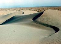 Каракумы - пустыня в Центральной Азии