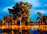 Маррамбиджи (река)