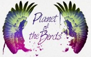 Планета птиц - Planet of the Birds